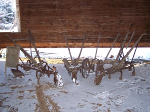 Horse drawn cultivators in old barn