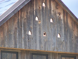 4_original siding restored for barn style home