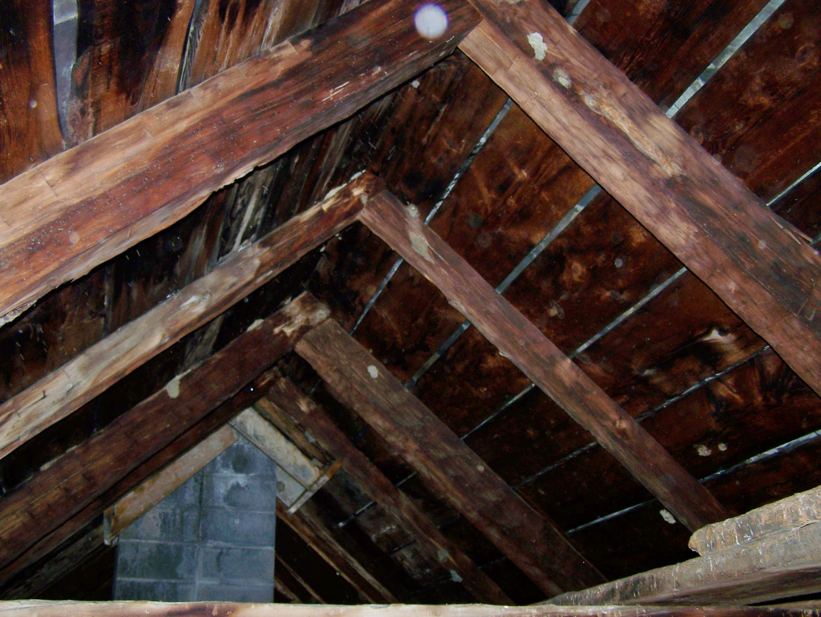 can you help save this old timber frame house from being timber frame roof
