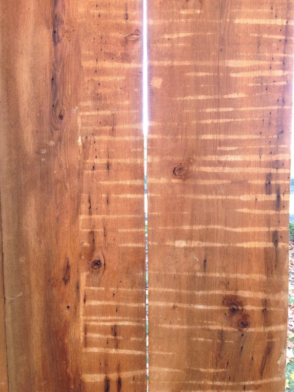 20 inch wide Sheating Boards