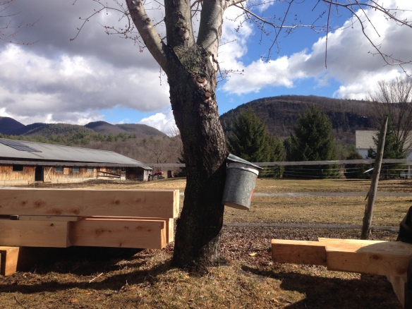 maple sugaring and timber framing