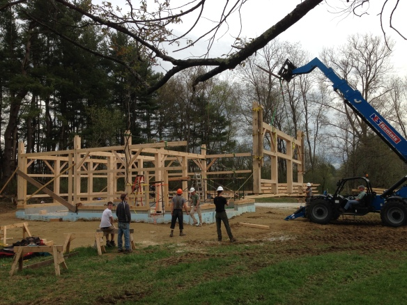 lifting final bent into timber frame baren