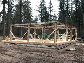 Erected Vermont Timber Frame Barn on Whidbey Island_Day 2