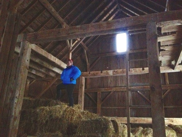 partial floor joists in timber frame barn for sale